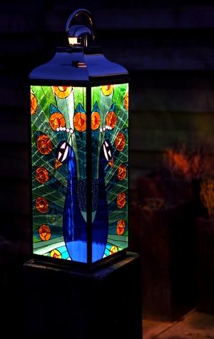 Thumb magies glas marije gies lantaarn peacock 1